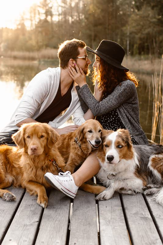 sesja z psami